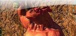 News – Papo & Yo revealed for PSN