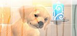 News – PlayStation Vita Pets gets release date